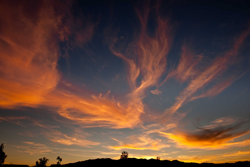 Sunset Needles CA Dec 8 10-2