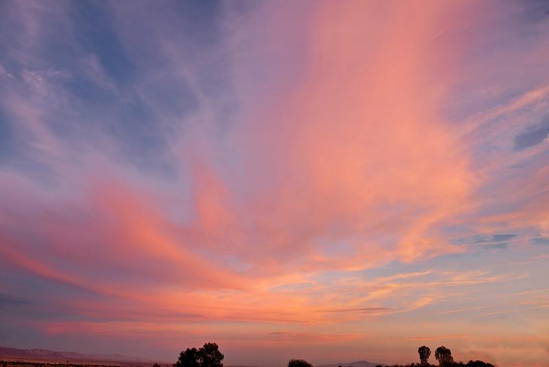 Sunset Needles CA Dec 8 10-3