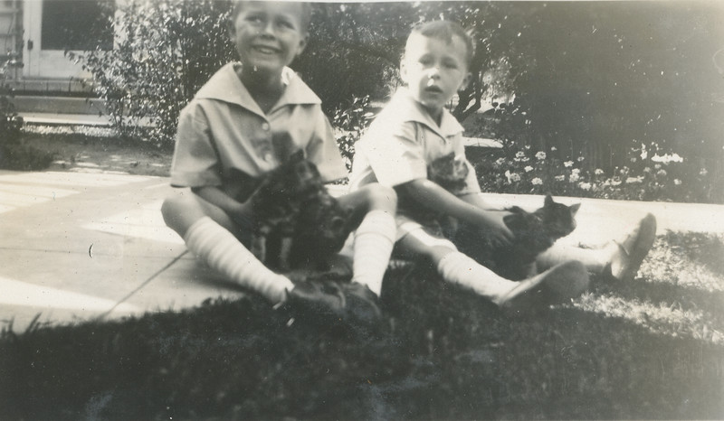 Frank and Howard with their kittens.