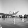 Sailboat glides through the harbor