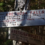 Frankenstein Cliff and Arethusa Falls 116