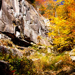 Frankenstein Cliff and Arethusa Falls 69