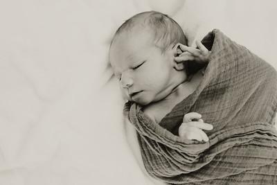 www jennyrolappphoto com_Baby_Frankie-12