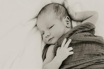 www jennyrolappphoto com_Baby_Frankie-24