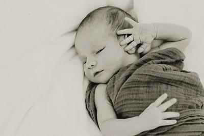 www jennyrolappphoto com_Baby_Frankie-21