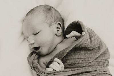 www jennyrolappphoto com_Baby_Frankie-11