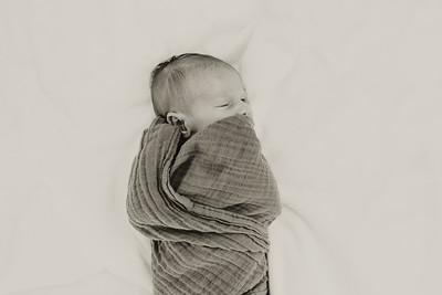 www jennyrolappphoto com_Baby_Frankie-2
