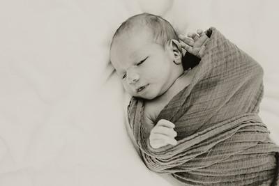 www jennyrolappphoto com_Baby_Frankie-14