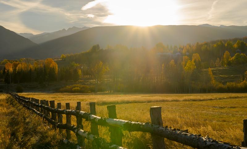 Aspen Golden Sunrise