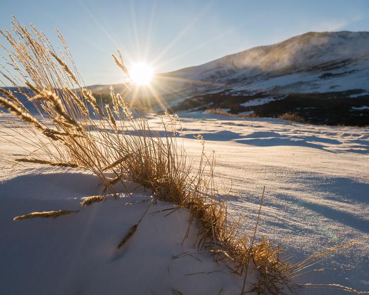 Frankieboy Photography |  Sun Star | Rocky Mountain Landscapes Guenalla Pass
