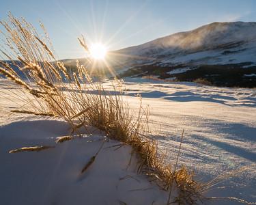 Sun Star | Rocky Mountain Landscapes Guenalla Pass