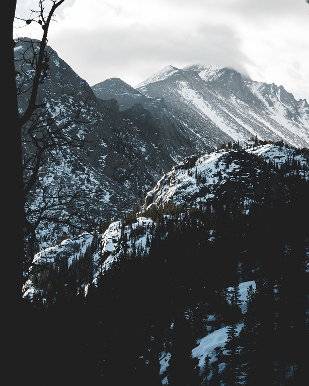 Natural Grayscale | Rocky Mountain Landscapes