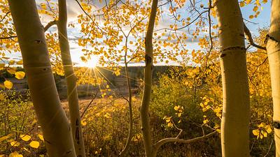 Frankieboy Photography | Rocky Mountain Landscapes