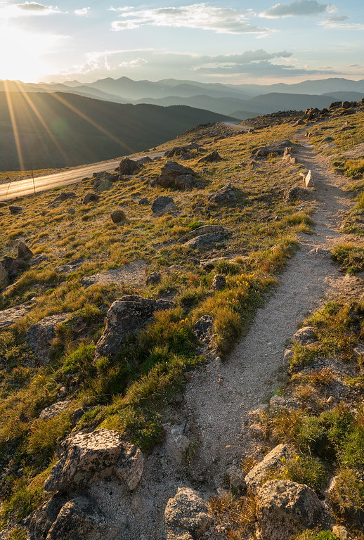 Desire Path In The Wild   Rocky Mountain Landscape Photography