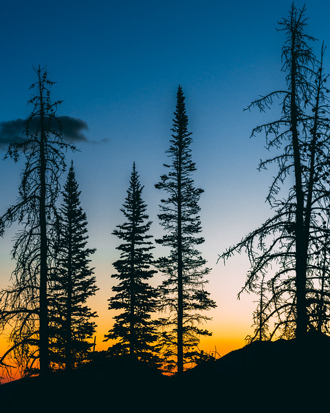 Frankieboy Photography |  Gradient Skies |  Rocky Mountain Landscapes  Dream Lake