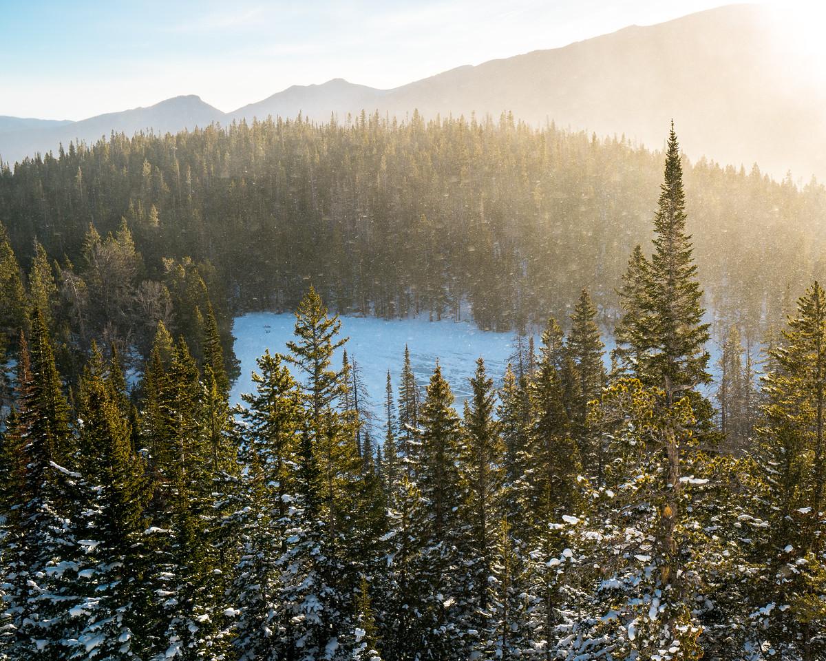 Shimmering Golden Snow | Rocky Mountain National Park Colorado