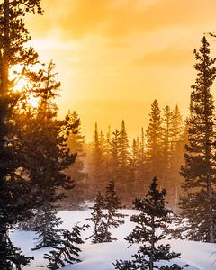 Frankieboy Photography | Golden Winters
