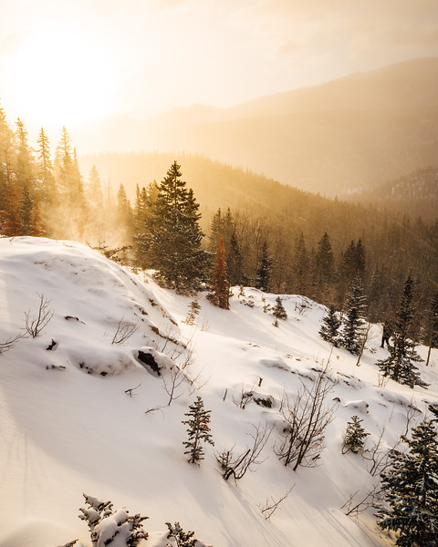 Frankieboy Photography |  Colorado Nature In Winter