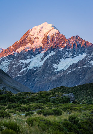 Pink Alpine Glow Aoraki Mt. Cook, New Zealand