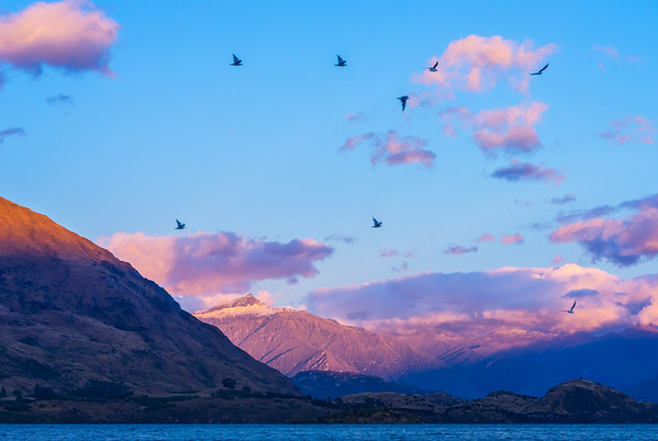 Lake Wanaka Sunrise Birds Flyin High