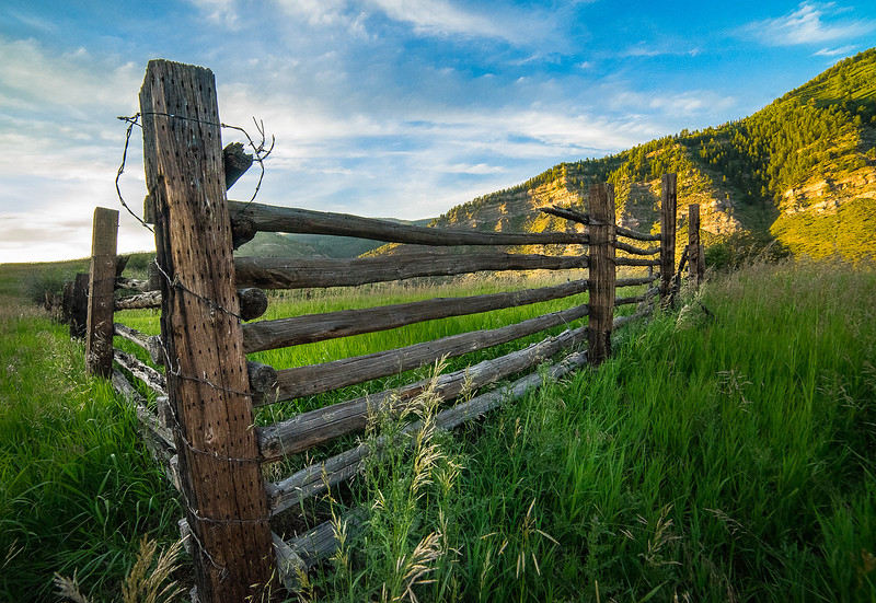 Frankieboy Photography |  Meadows of Minturn