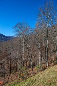 Franklin North Carolina 2013-115