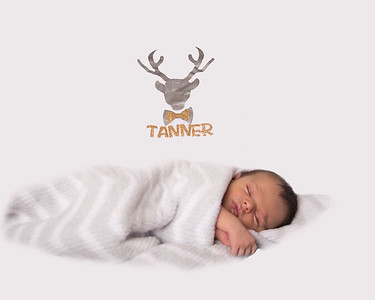 TannerN (24)