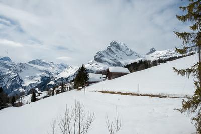 Aussicht auf den Braunwalder Hausberg, den Ortstock