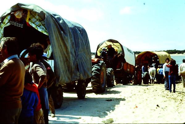 Feria Rocio at San Lucar,1985 Coto Danana