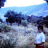 The note on the slide said Seven Sleepers.  Shirley Antrobus 1967.  I think that was on the way to Ephasis in one of the little valleys we explored.