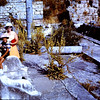Toilet bath of Venice, Ephasus  Shirley and Craig Antrobus.  Craig is sitting on a dolphin,.