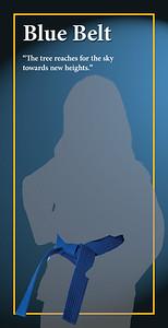 Blue Belt Banner