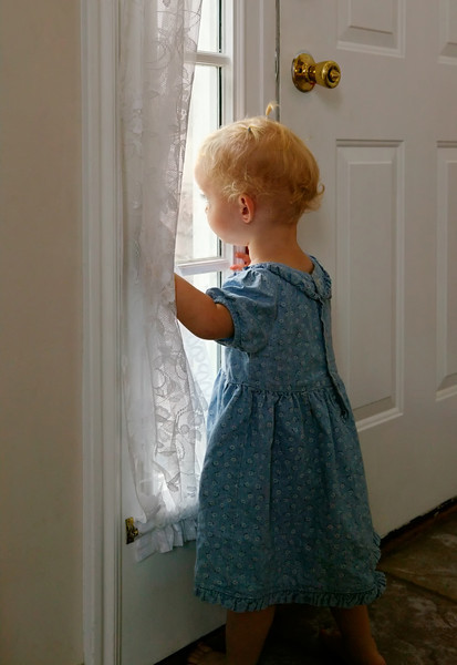 "Toddler waiting by window for parent to return.  The ""XLarge"" and smaller photo sizes are FREE for any personal use (under a <a href=""http://creativecommons.org/licenses/by-nc-nd/2.0/"">Creative Commons</a> license). Click the ""Buy"" or shopping cart button (above the image) to purchase prints or downloads. PRICING: 1-megapixel Personal downloads are $4.95; 4-megapixel and ""Original"" (6-megapixel) Personal downloads are $49.95; 1-megapixel Commercial downloads are $49.95, 4-megapixel and ""Original"" (6-megapixel) Commercial downloads are $199.95; NOTE: Free personal use requires a photo credit to my company, ''<a href=""http://www.tssphoto.com/"">The Stock Solution</a>'', and link to that Web site if you use the image on a personal Web site."