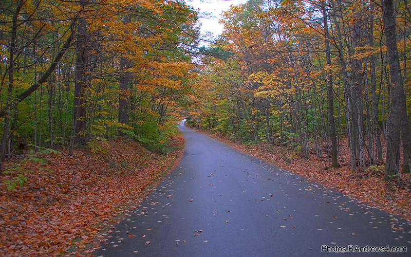 Along Passconaway Rd. near Conway, NH