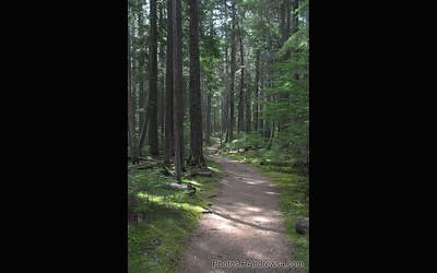 John's Lake Trail