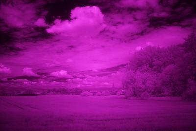 IR snímek před vyvážením bílé - tedy tak, jak ho vidíte po pořízení na displeji fotoaparátu.