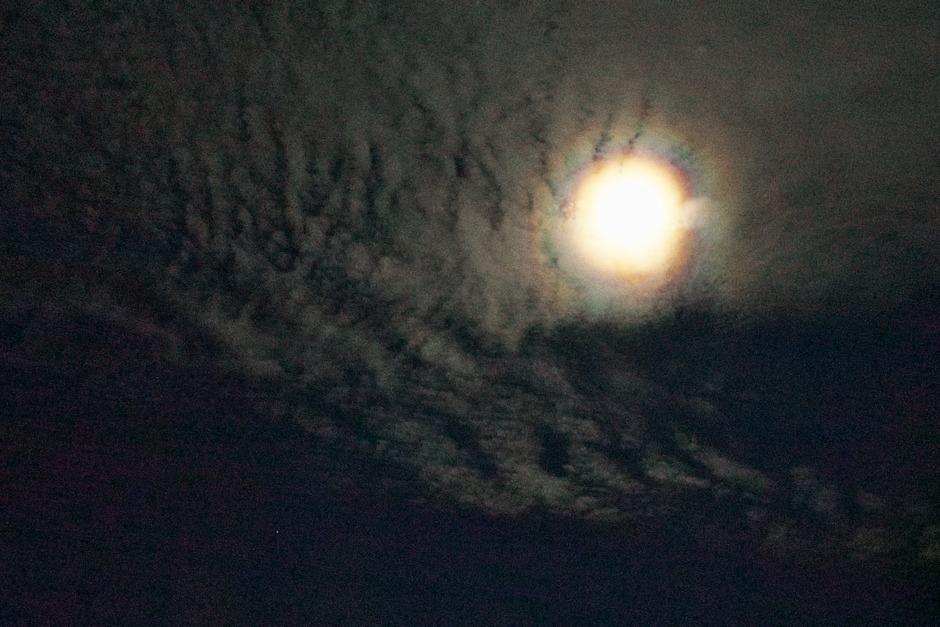Halový kruh kolem Měsíce
