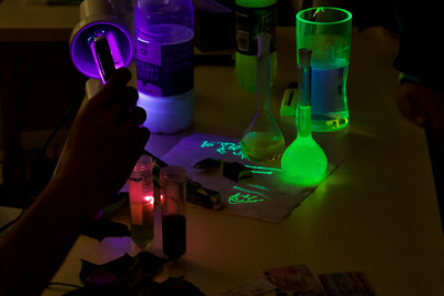 Chlorofyl z listů září červeně - ale listy samotné přitom pod UV lampou nereagují