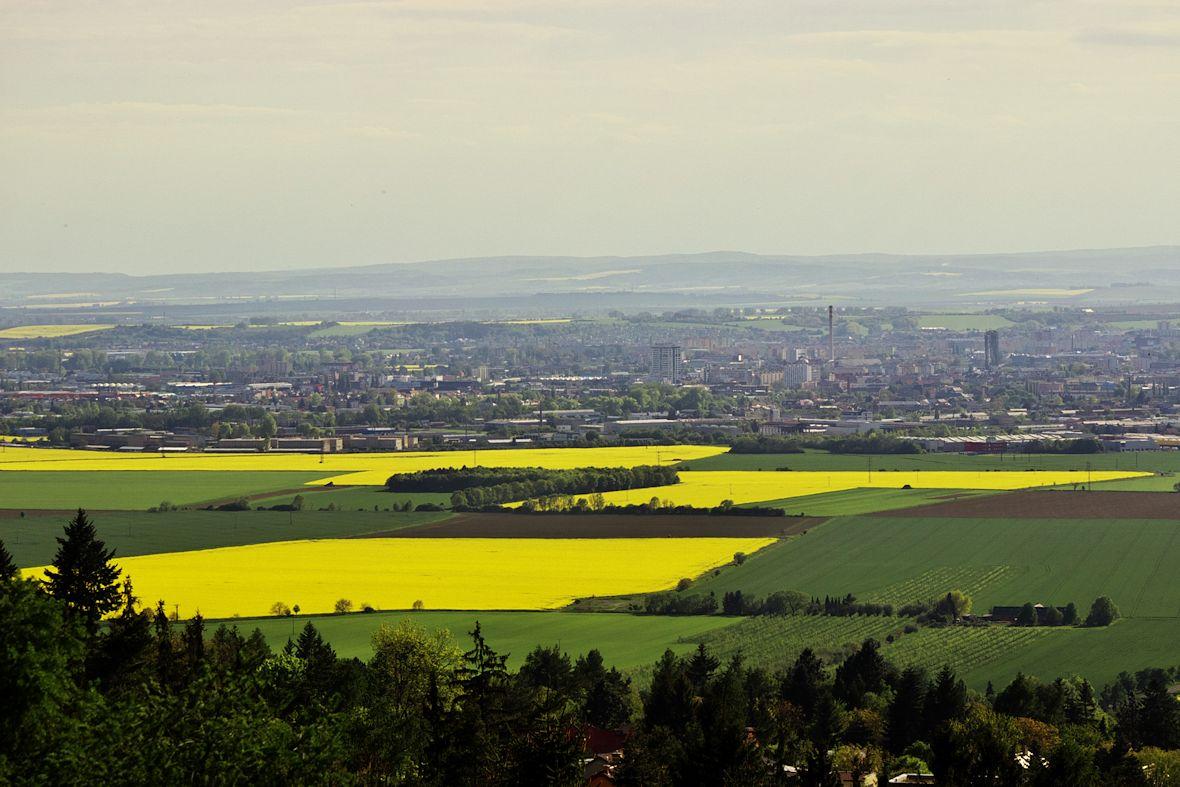 Pohled z věže rozhledny na Olomouc a dál na Slavonín směrem na jihozápad.