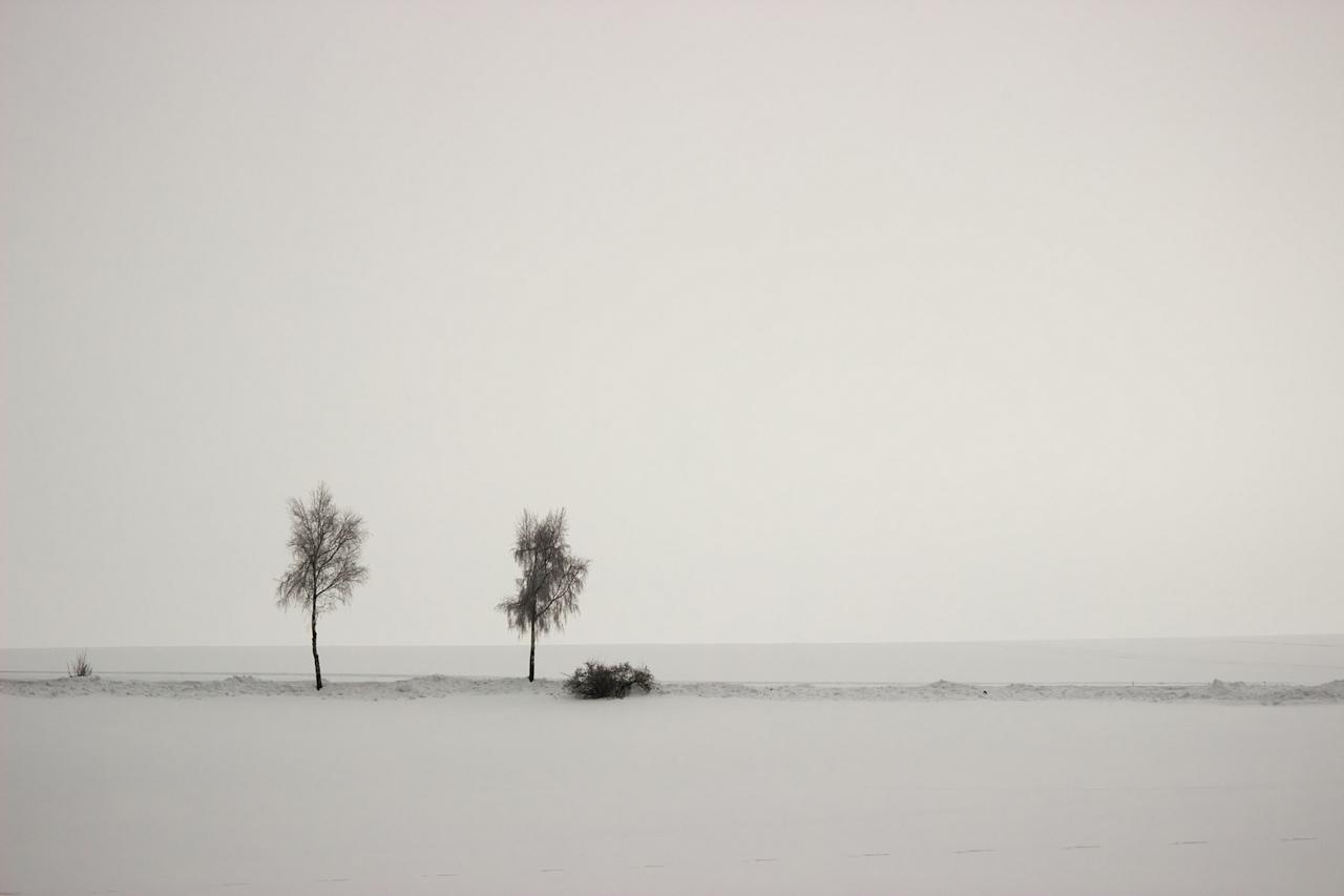 Zimní krajina občas vybízí k dost velkému minimalismu