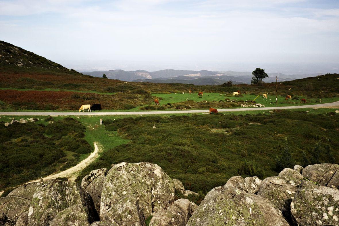 Pohled z kamenného vrcholku na vrcholku Foiy směrem takřka přímo na sever.