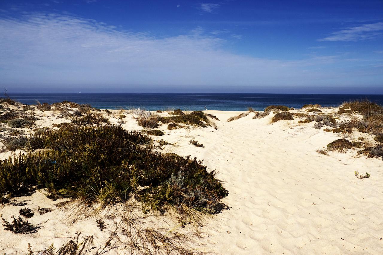 Na hřbetu duny