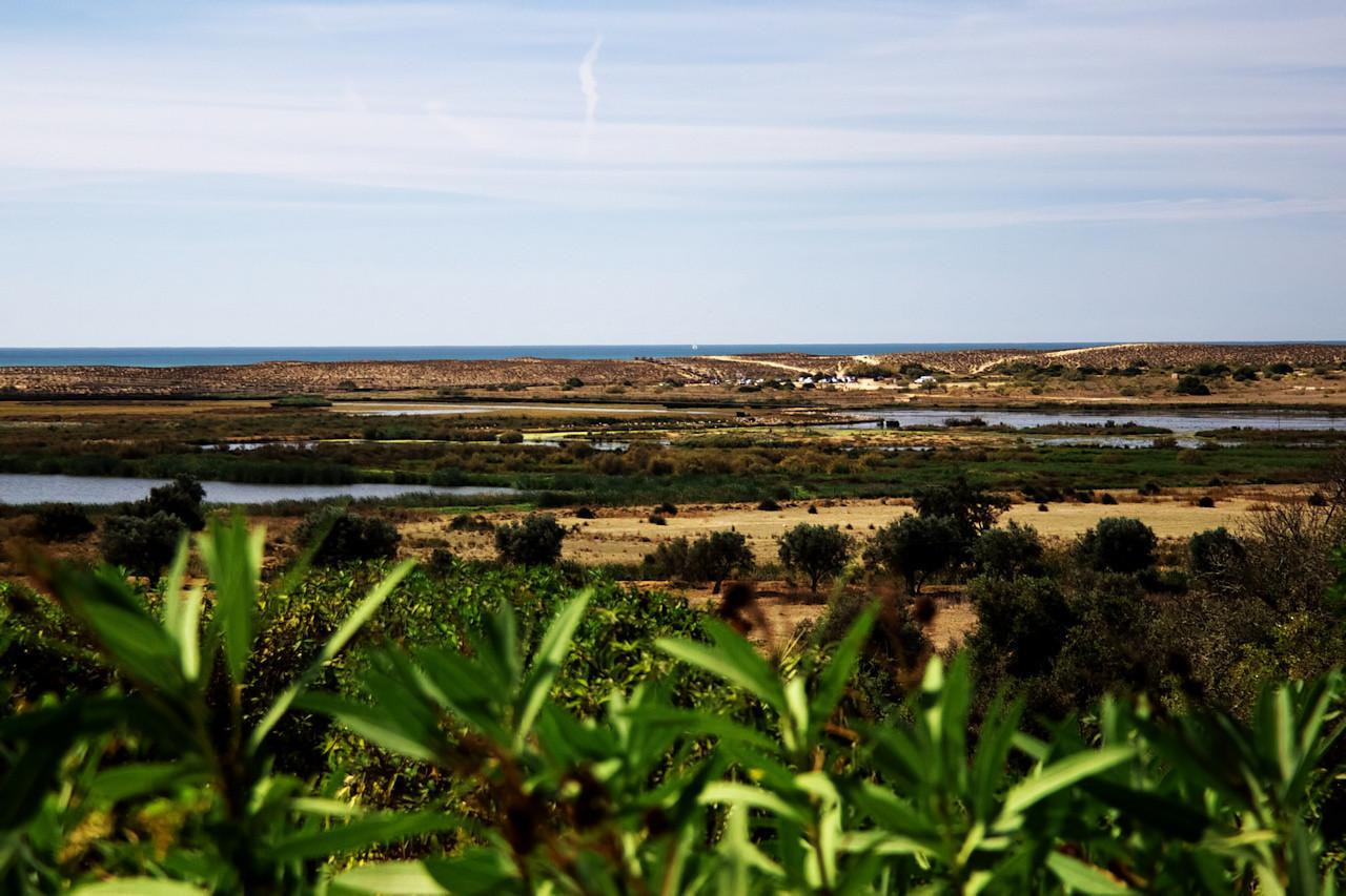 Pohled na lagunu Salgados, kterou jsme obcházeli po obvodu duny, táhnoucí se středem záběru