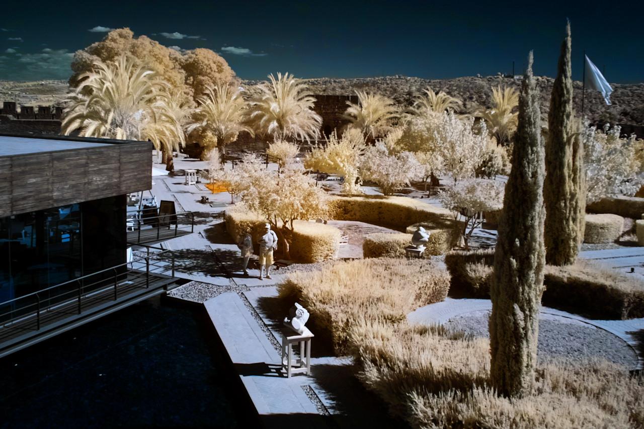 Hrozně se mi líbí infračervené palmy, keře a trávy, takže tu je IR snímků trochu víc než obvykle...