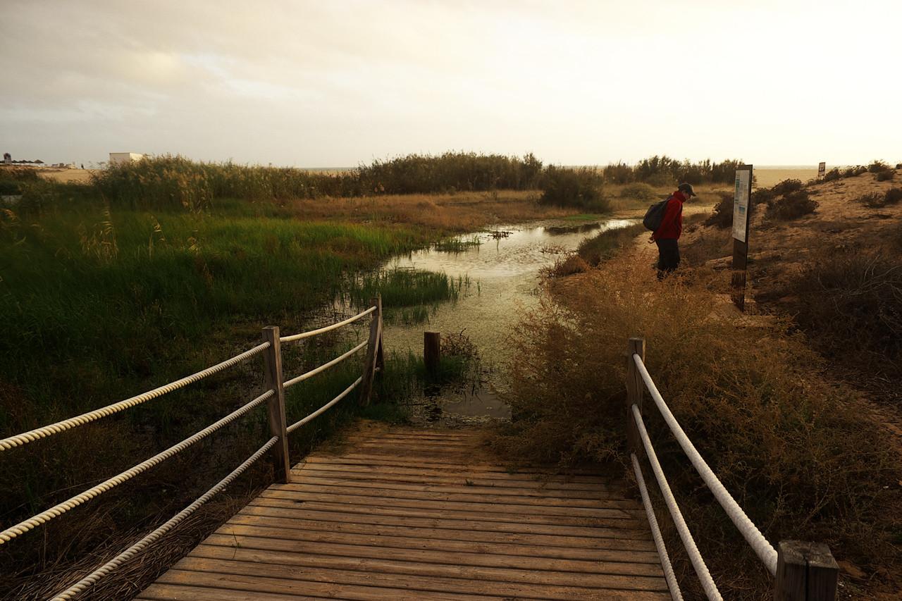 V laguně bylo více vody než obvykle, takže například tady stezka vedla přímo do vody