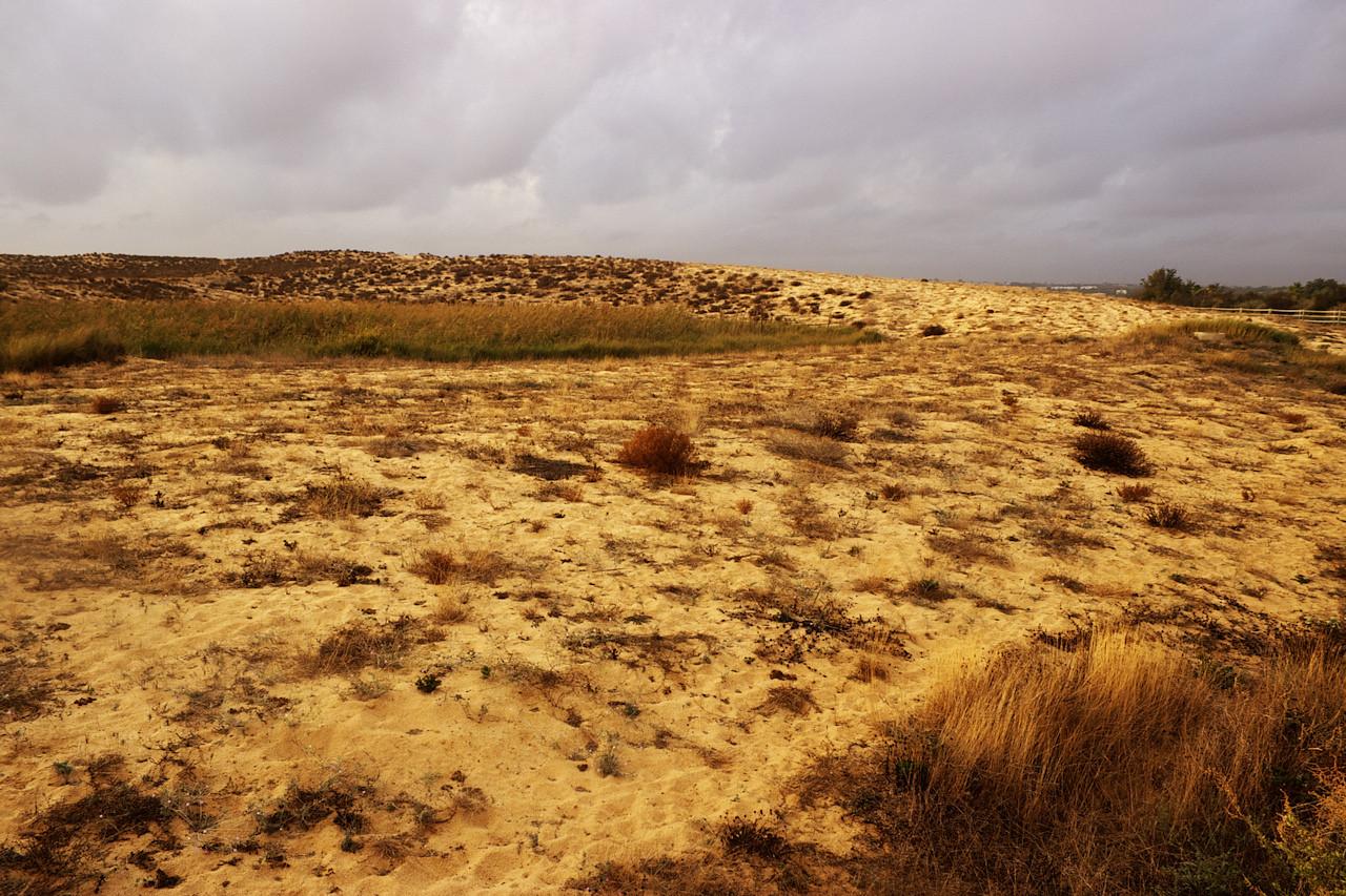 Písečná duna mezi Atlantikem a lagunou Salgados
