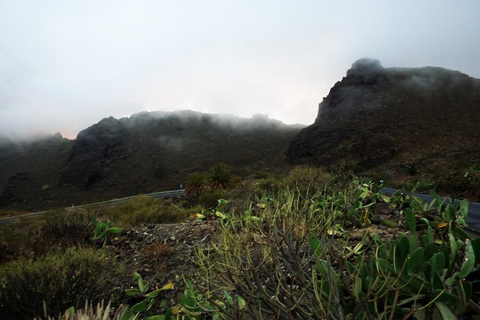 Za vrcholky Los Gigantes pod Santiagem del Teide právě zapadá slunce. My jsme tu víceméně v mlze.