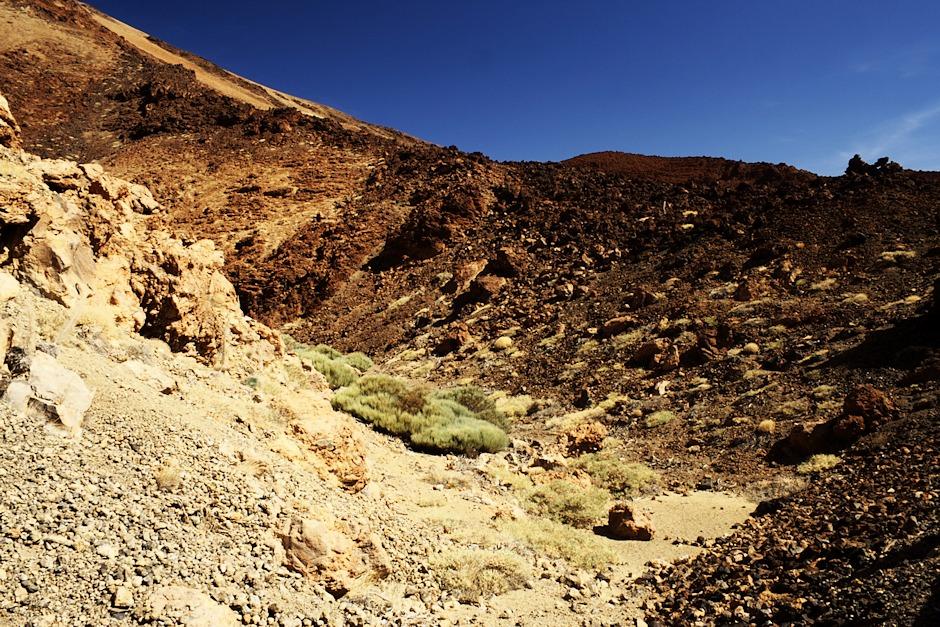 Úbočí Montaňy Blanca