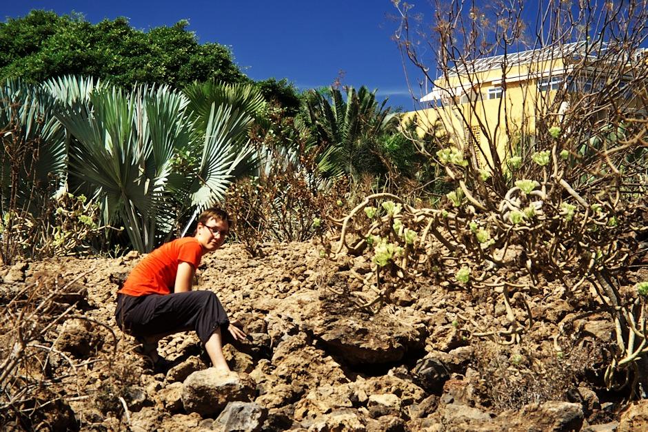 Další hezká ukázka toho, jak je geocaching na Tenerife laskavý - cache by se měla nacházet pod jedním z kamenů...