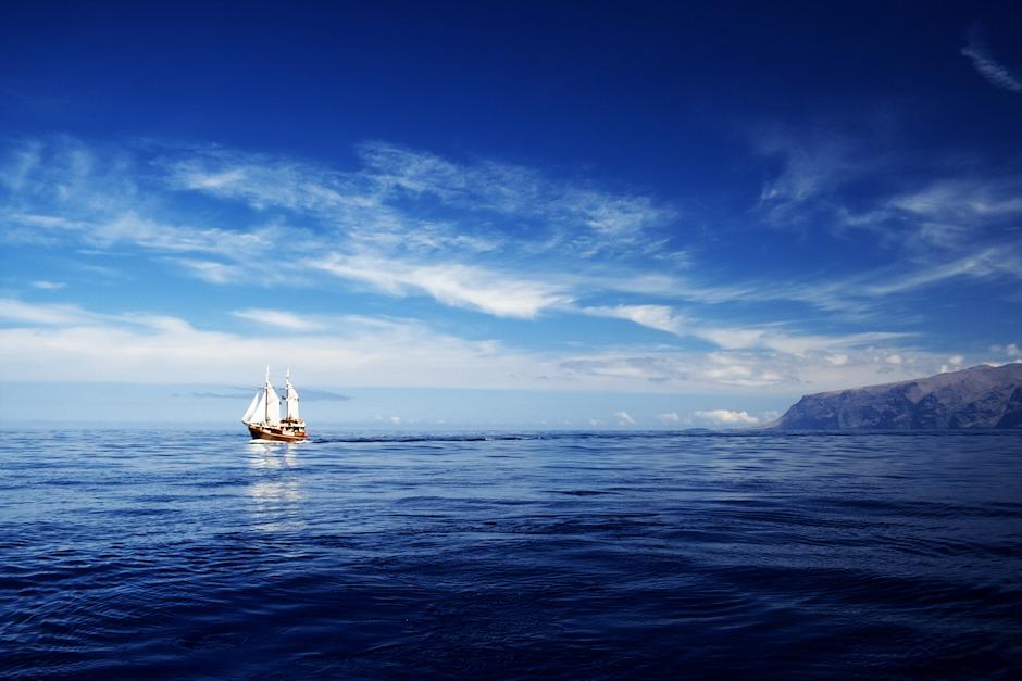 Když některý z kapitánů narazí na zajímavá zvířata, ohlásí jejich polohu do rádia i pro ostatní lodě. I díky tomu je na Tenerife poměrně velká šance, že alespoň některé ze slibovaných tvorů skutečně uvidíte. Tady se na naši pozici blíží Filpper Uno.
